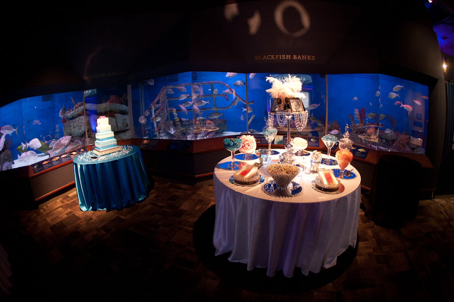 Charleston Sc Wedding Planner Candy Buffet At The South Carolina Aquarium Cake By Cakes Karda